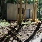 Sve što nam treba je ova koliba u šumi