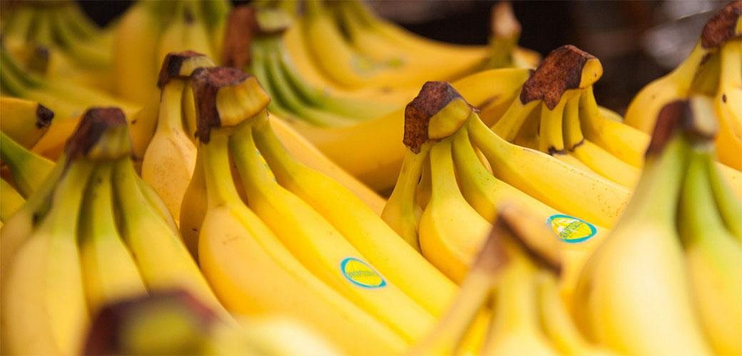 Slika: Banana za doručak je loša ideja