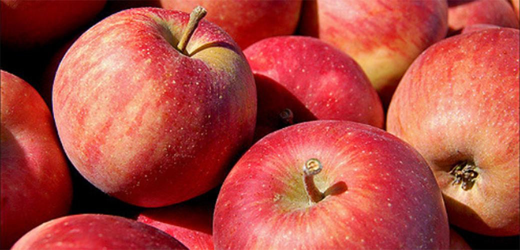 Jabuka na dan je put do zdravlja