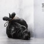 Životinje nisu đubre