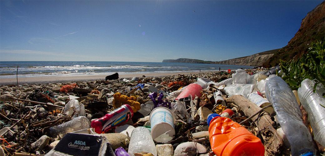 Slika: Plastična čaša iz 1976. godine pronađena na plaži
