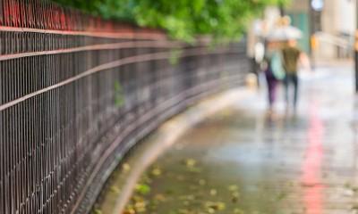 Zašto zemlja divno miriše posle kiše?  %Post Title