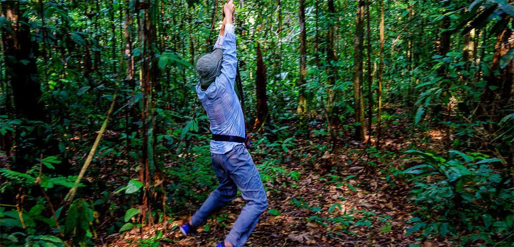 Slika: Majmuni spasili čoveka u Amazonu