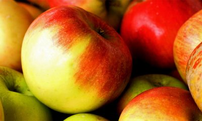 Pojedite jabuku svakog dana  %Post Title