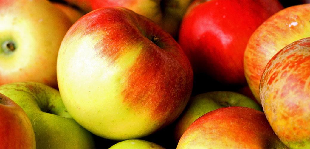 Pojedite jabuku svakog dana