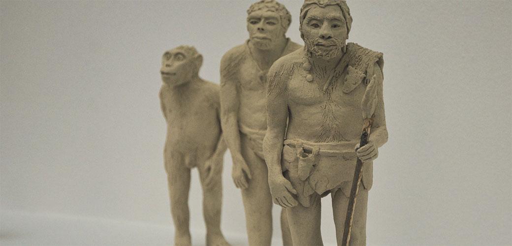 Slika: Novo otkriće o evoluciji čoveka