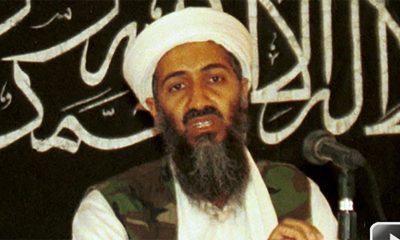 Osama bin Laden je imao kolekciju filmova