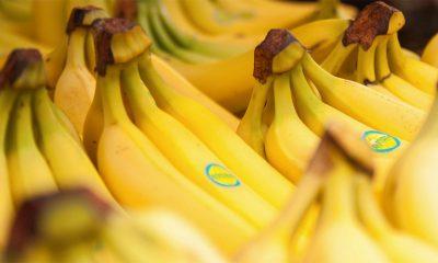 Banane su stvarno STVARNO dobre za vas