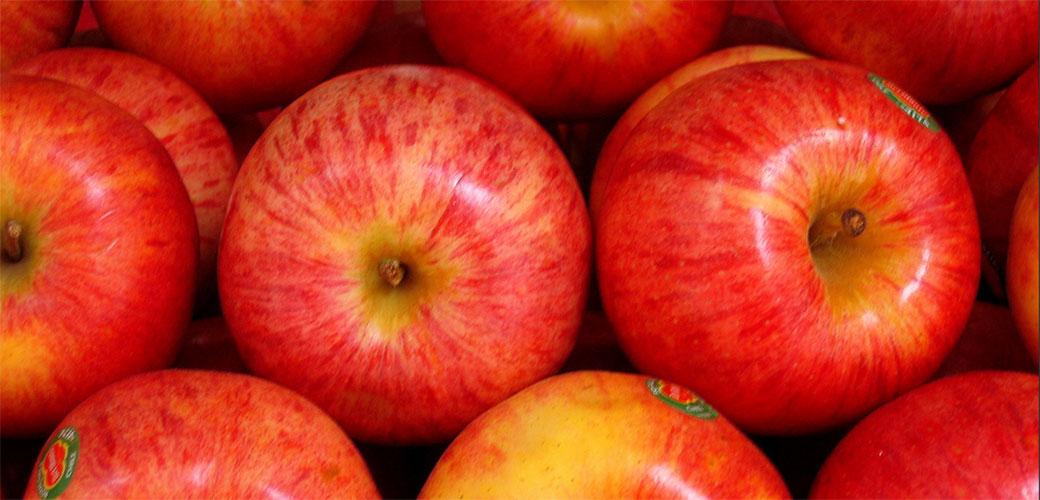 Slika: Zašto je jabuka savršeno voće