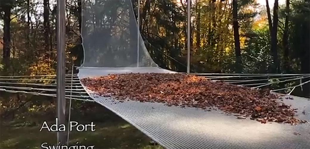 Slika: Lišće koje prkosi gravitaciji