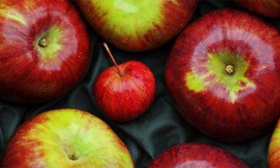 Naučnici otkrili najbolji način za pranje voća