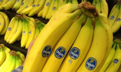 Zašto banane nije dobro jesti za doručak?  %Post Title