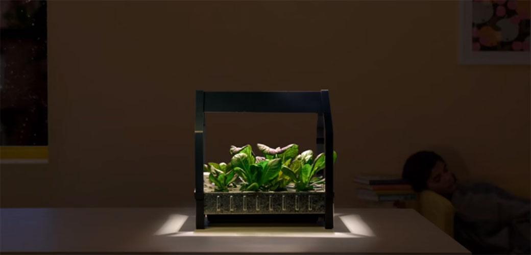 Slika: IKEA napravila baštu na London Design Week