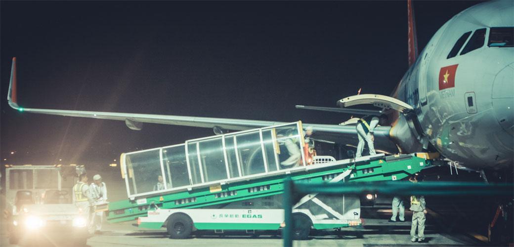 Slika: 8 avionskih tajni koje ne bi trebalo da čujete