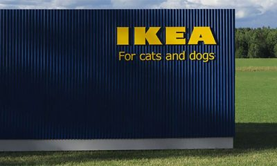 IKEA kolekcija za kućne ljubimce  %Post Title