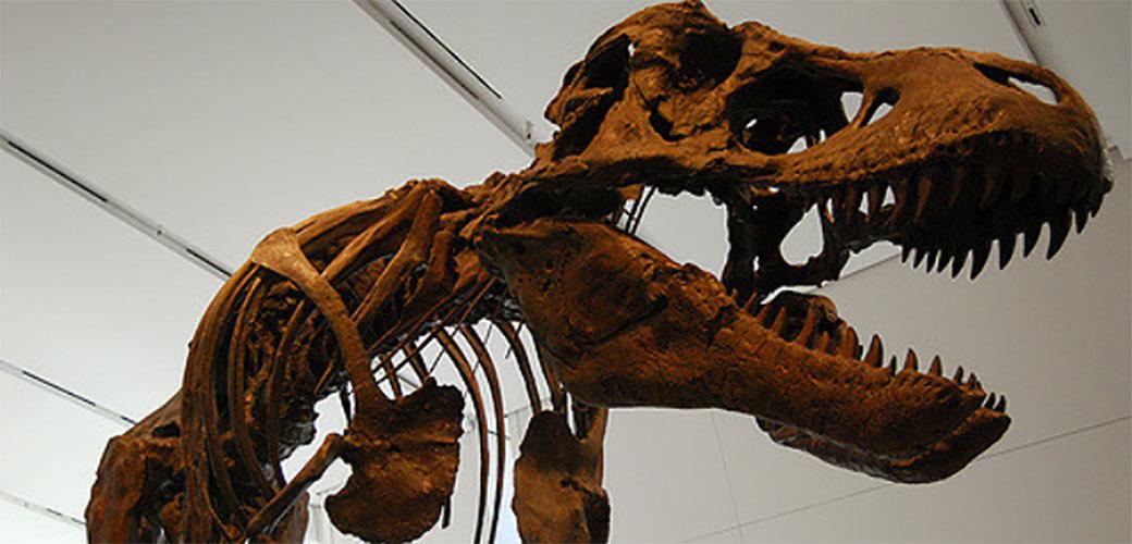 Otkriven ogromni leteći dinosaurus