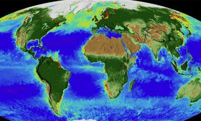 Strašne promene na Zemlji u poslednjih 20 godina