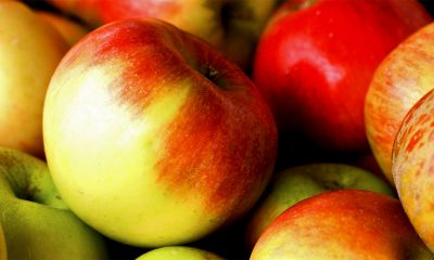 5 zanimljivih činjenica o jabukama  %Post Title
