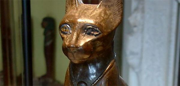 Mačke i ljudi već dugo imaju tajnu vezu