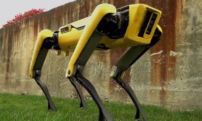 Robotski pas je postao još jeziviji