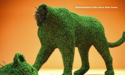 Brutalna kampanja za zaštitu prirode