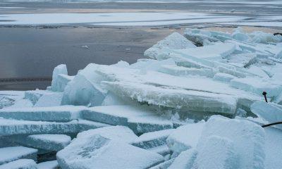 Arktik će se odlediti