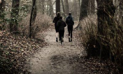 Šveđani imaju ideju kako da živite zdravije i srećnije  %Post Title