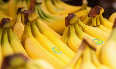 Sada postoje i banane kojima se jede kora