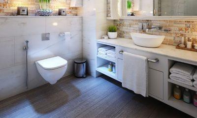 Kakva je voda iz wc šolje?
