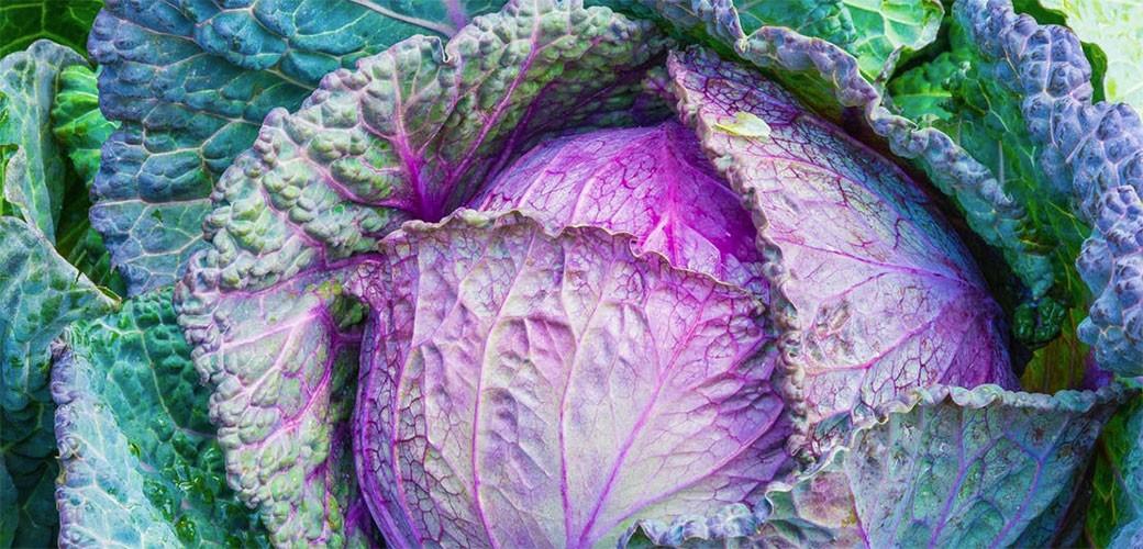 Voće i povrće donosi i opasnosti