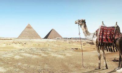 Egipat gradi novi glavni grad  %Post Title