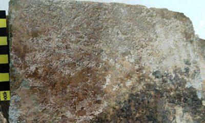 Otkriven najstariji zapis Odiseje  %Post Title
