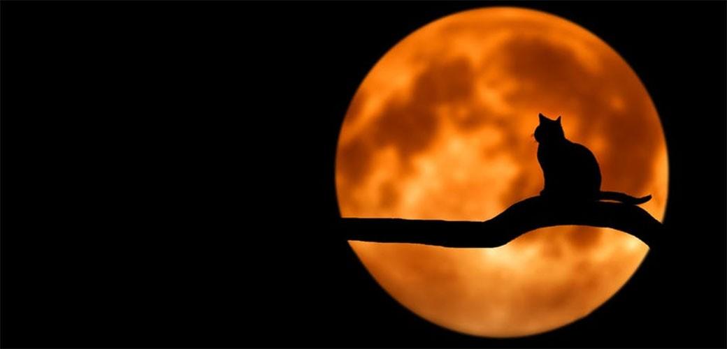 Ove nedelje je potpuno pomračenje Meseca