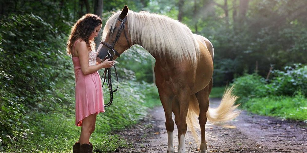 Konji jako dobro prepoznaju ljudske emocije  %Post Title
