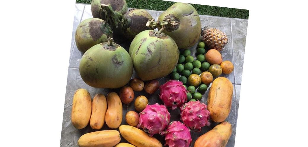 Voćna dijeta - Oni jedu samo voće već dve godine