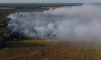 Vojska se zanela pa zapalila šumu