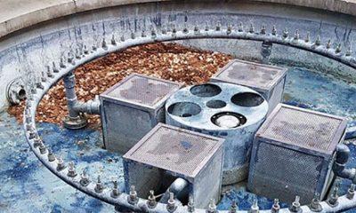 Ubacila 356 kg novčića u napuštenu fontanu  %Post Title