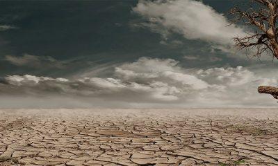 Do 2030. godine očekuje se drastično globalno zagrevanje  %Post Title