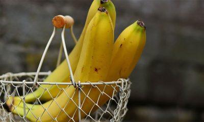 Koje banane su najbolje  %Post Title