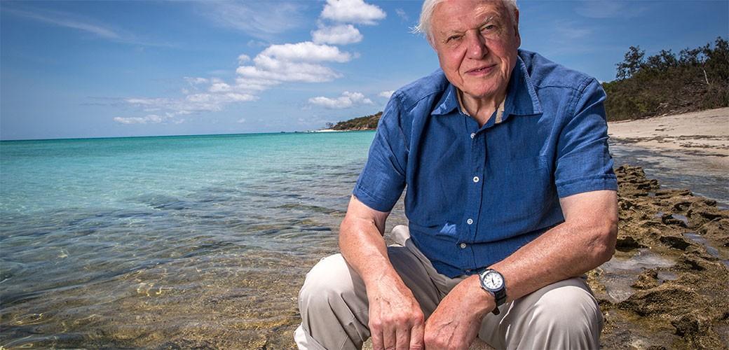 David Attenborough posle 60 godina prešao na Netflix i snima seriju Naša planeta