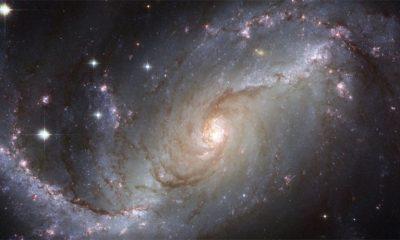 Stvorena kosmička supica