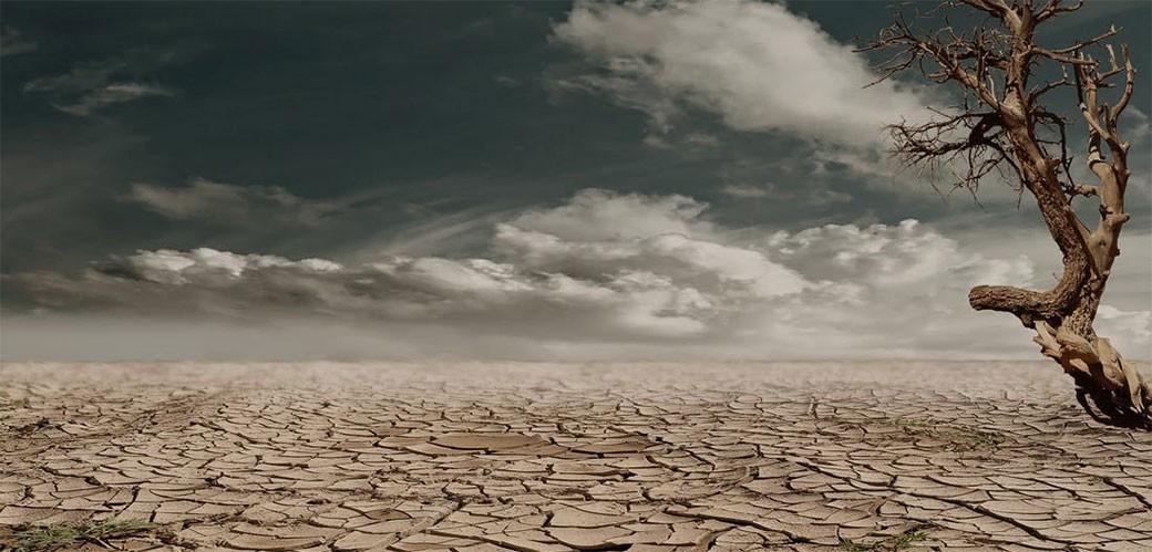 Svi ćemo pomreti bolesni zbog globalnog zagrevanja