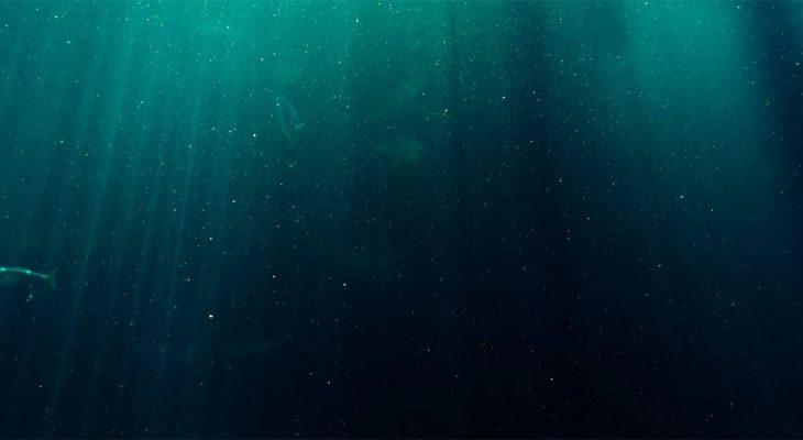 Naučnici sišli do najdublje tačke okeana
