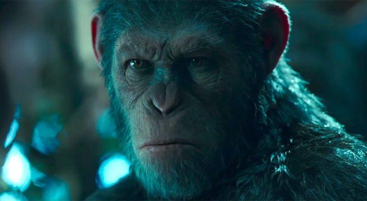 Napravljen embrion čoveka majmuna