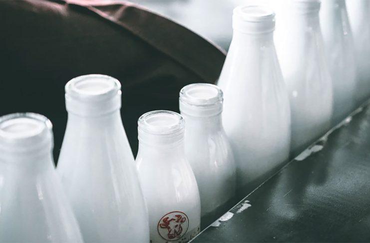 dostava-mleka