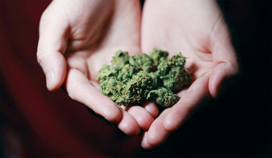 prodaja-marihuane