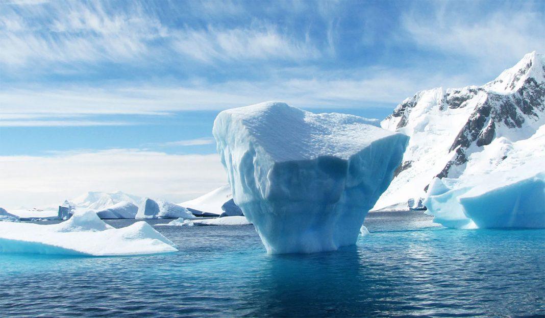 Kako-izgleda-zivot-na-arktickom-ledu