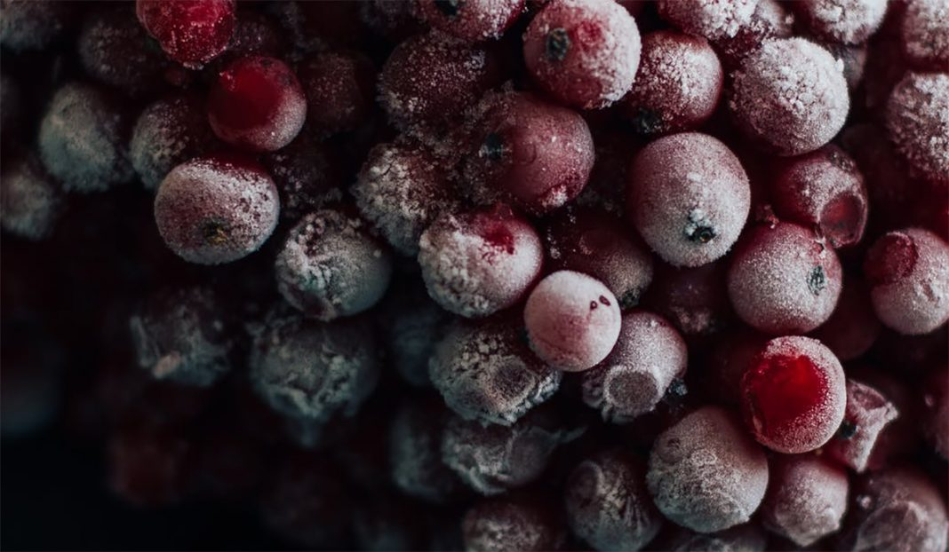 smrzuna-hrana-covid-19